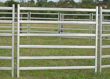 Galvanized Steel Cattle Yard Panels Anti - Oxidizing Property Excellent Pressure Resistance